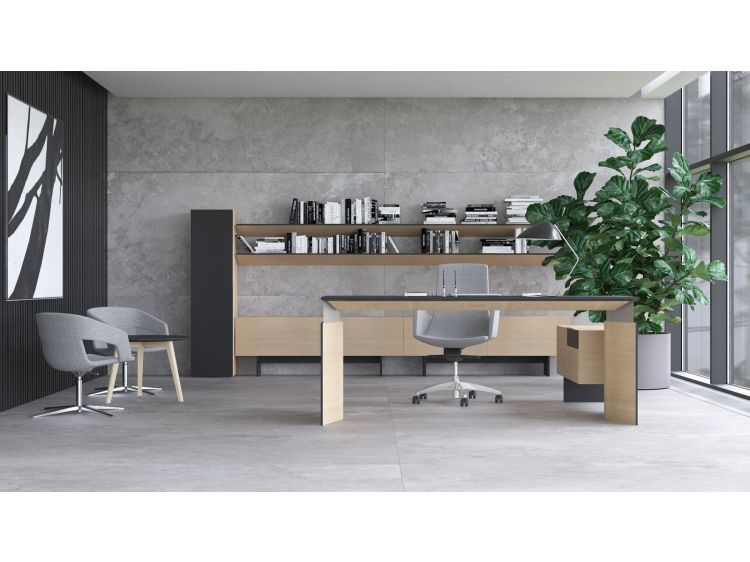 Move executive sit-stand desk