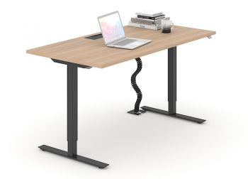 One sit-stand desk